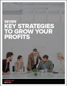 dhruvsoft-seven-ways-to-grow-your-profits